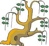 传统树木_120