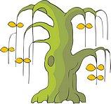 传统树木_126