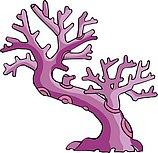 传统树木_130