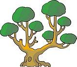 传统树木_137