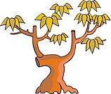 传统树木_153