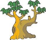 传统树木_155