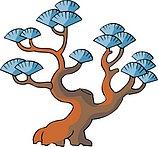 传统树木_156