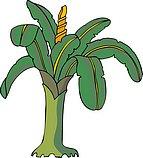传统树木_160