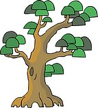传统树木_163