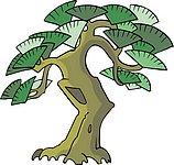 传统树木_164