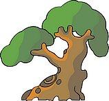 传统树木_166