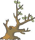 传统树木_168