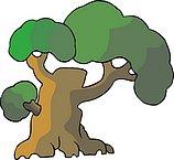 传统树木_170