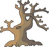 传统树木_172