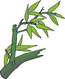 传统树木_57