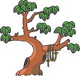 传统树木_59