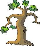 传统树木_60