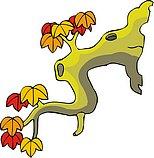 传统树木_63