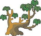 传统树木_67