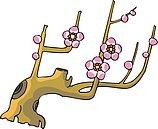 传统树木_69