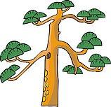 传统树木_74