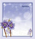 矢量鲜花背景_113