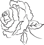 韩国矢量精美花纹