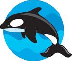 矢量跳跃的海豚