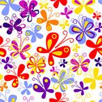 五彩缤纷的蝴蝶