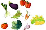 矢量常见蔬果
