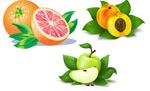 橙子,苹果,黄桃