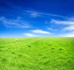 草地天空5