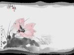 水墨丹青-荷花