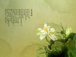 墨迹莲花1