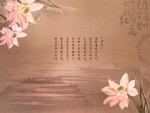 墨迹莲花3