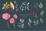 水彩花卉素材包