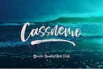 Cassanemo