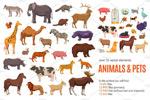 野生动物插画矢量