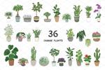 植物插画矢量