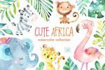 水彩非洲动植物