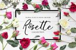 玫瑰花卉平面广告