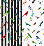 花鸟手绘背景