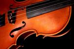 小提琴特写
