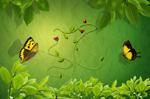绿色树叶藤蔓