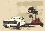 汽车椰子树矢