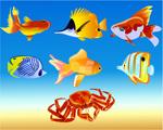 鱼和蟹矢量
