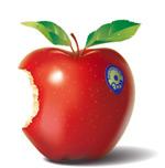 逼真的红苹果