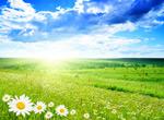 春暖花开图片2