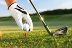 高尔夫球运动2