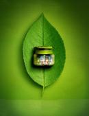 绿色房舍地产广告