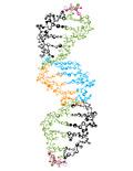 矢量分子结构