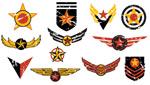 怀旧飞行徽章
