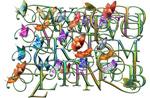 英文艺术花体字