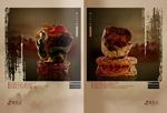 木化石艺术品画册